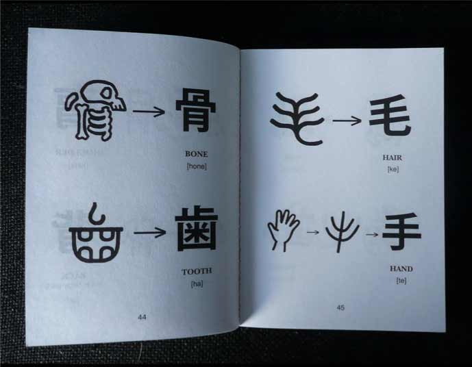 An open textbook depicting the origins of four Chinese characters: bone, tooth, hair, and hand.