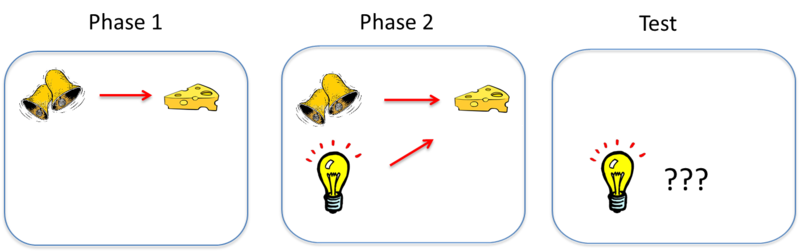 Diagram depicts the blocking of a second stimulus, a light, by the original stimulus, the ringing bell. The process is described in the following section.