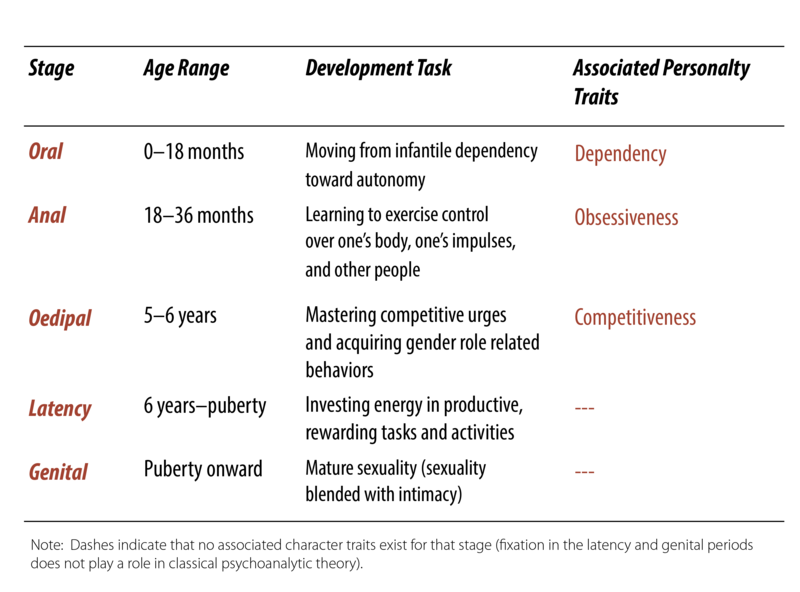 The psycho-sexual stage model. Between birth and 18 months is the oral stage, during which an infant moves from dependency toward increasing autonomy. From 18-36 months is the anal stage, during which the child acquires social and self control. From ages 5-6 is the oedipal stage, during which the child develops gender identity. From 6 years to puberty is the latency stage, during which the child invests in rewarding tasks and activities. From puberty onward is the genital stage with mature relationships including sex and intimacy.