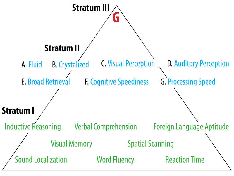 "Caroll's Model of Intelligence is displayed as a pyramid. At the top is Stratum III which consists of ""G"" or general intelligence factor. The middle of the pyramid is Stratum II consisting of Fluid Intelligence, Crystalized Intelligence, Visual Perception, Auditory Perception, Broad Retrieval, Cognitive Speediness, and Processing Speed. Finally, the base of the pyramid is Stratum I, consisting of Inductive Reasoning, Verbal Comprehension, Foreign Language Aptitude, Visual Memory, Spatial Scanning, Sound Localization, Word Fluency, and Reaction Time."