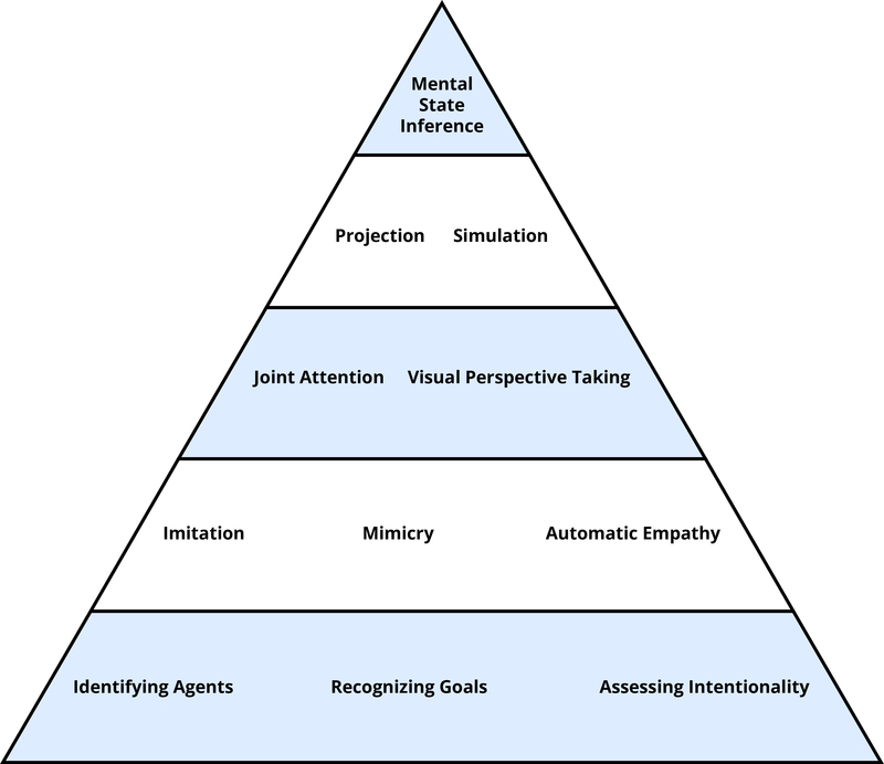 "Tools of Theory of Mind displayed as a pyramid with evolutionarily old process lower in the pyramid and evolutionarily recent processes higher in the pyramid. On the bottom level - ""Identifying Agents"", ""Recognizing Goals"", ""Assessing Intentionality"". Level 2 - ""Imitation"", ""Mimicry"", ""Automatic Empathy"". Level 3 - ""Joint Attention"", ""Visual Perspective Taking"". Level 4 - ""Projection"", ""Simulation"". Top level - ""Mental State Inference""."