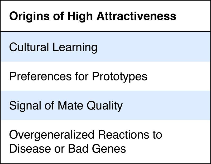 Origins of High Attractiveness: Cultural learning; preferences for prototypes; signal of mate quality; overgeneralized reactions to disease or bad genes.
