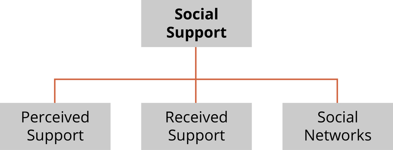 Diagram showing the three components of social support - perceived support, received support, and social networks.