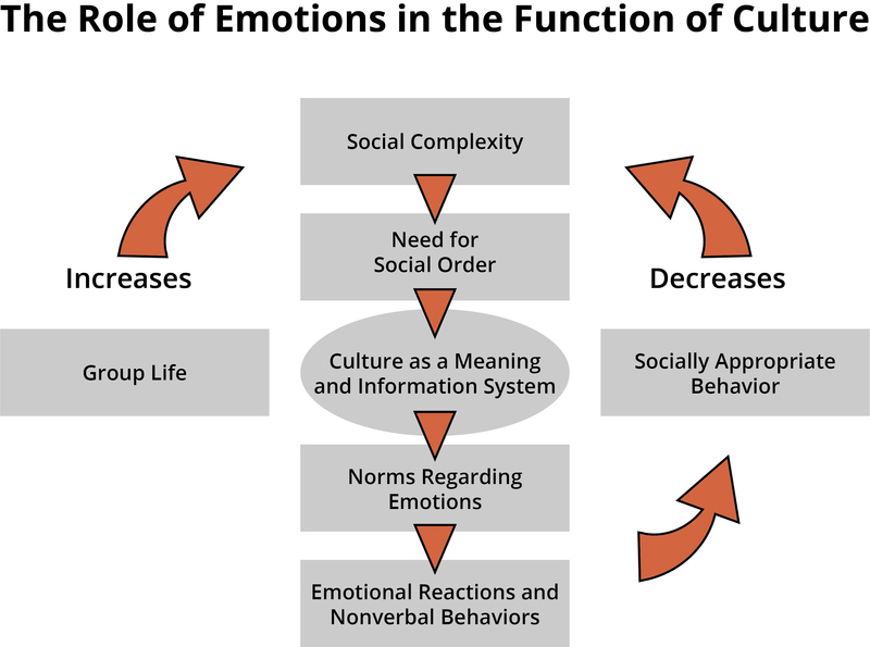 Functions of Emotions | Noba