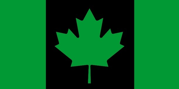 "This image is an illustration of the opponent process theory of vision. The image depicts the Canadian flag. Where the familiar Canadian flag is a red maple leaf on a white background bordered by two white columns this image is different. It shows a green maple leaf on a black background bordered by green columns. If a person stares at the green and black flag and then diverts their eyes to a blank surface such as a wall an ""after image"" of the Canadian flag will appear to hover there, only it will appear in red and white! Exactly the opposite colors the person was just staring at."