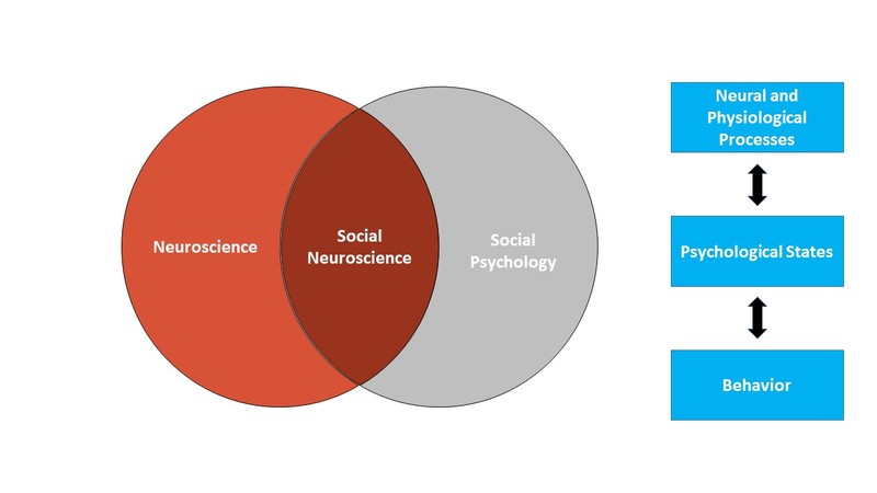 Figure 1 is composed of two parts. The first is a Venn diagram showing social neuroscience as a space of overlap between neuroscience and social psychology. The second part of the figure shows the bi-directional influence between neural and physiological processes and psychological states and between psychological states and behavior.