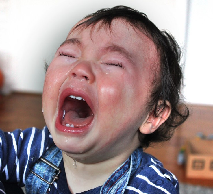 A red-faced toddler screams and cries with tears streaming down her face.