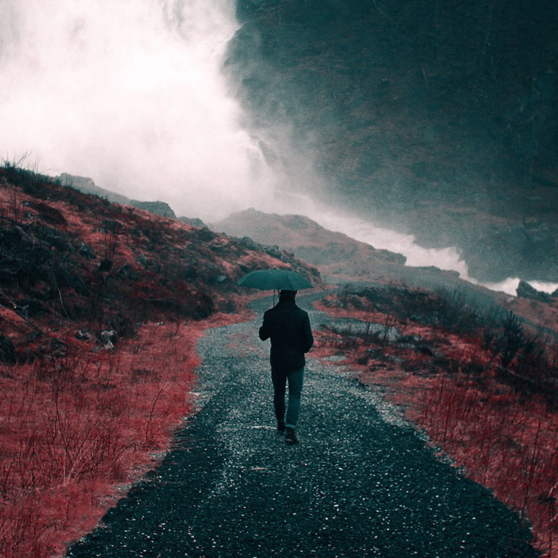 A man with an umbrella walks down a path into the distance.