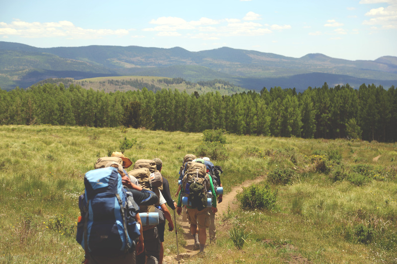 A group of hikers walk in a line on a trail through a meadow with forest and mountains in the distance.