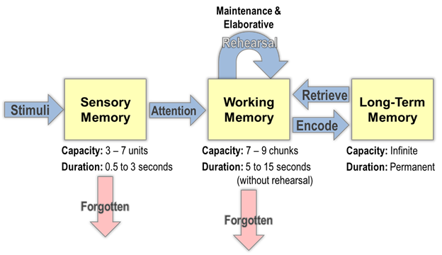 What Is Working Memory >> Helping Students To Work Their Working Memory Noba Blog Noba
