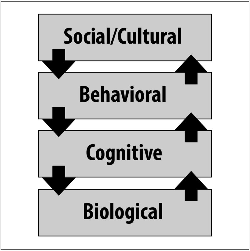 Four levels of analysis - biological, cognitive, behavioral, social/cultural.