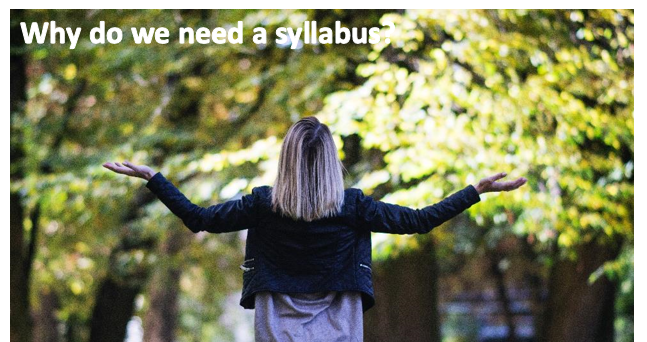 An image of a woman with her back to us and hands outstretched to the side. An image caption reads: Why do we need a syllabus?""