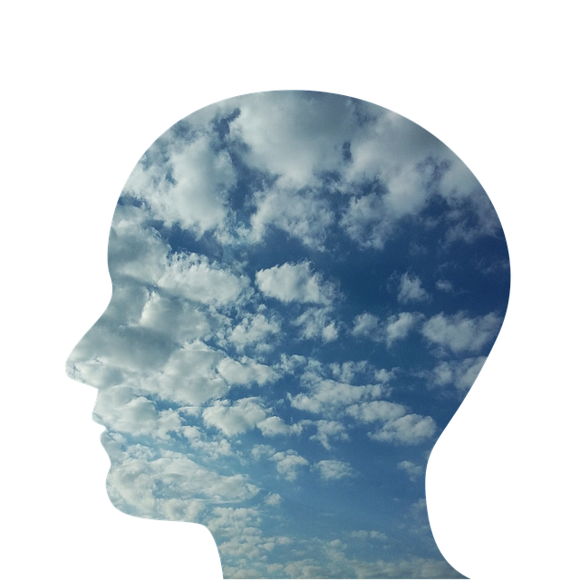 An outline of a head with the sky and clouds inside